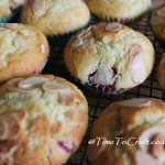 Dragonflies and Muffins