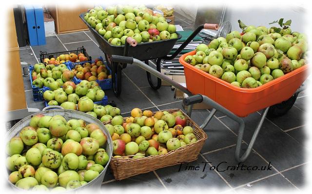 apples in barrows