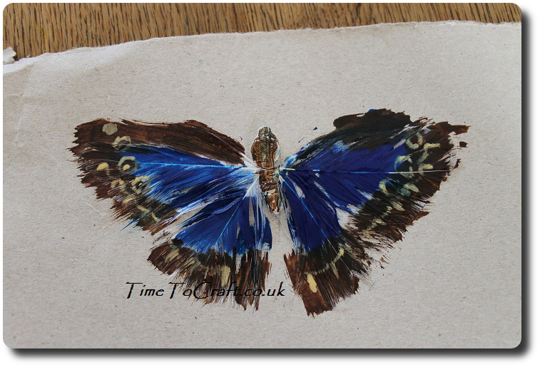 painted feather butterfly