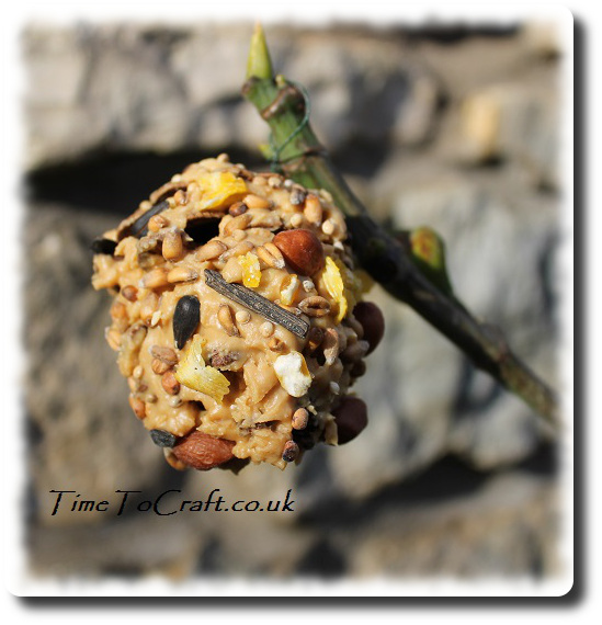 peanut and seed pine cone feeder on fig tree 2