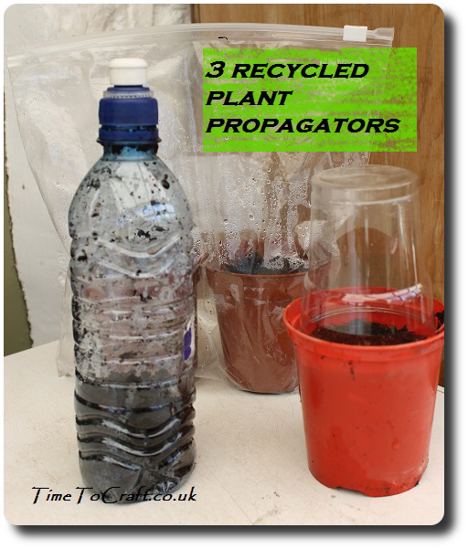 3 recycled plant propagator ideas