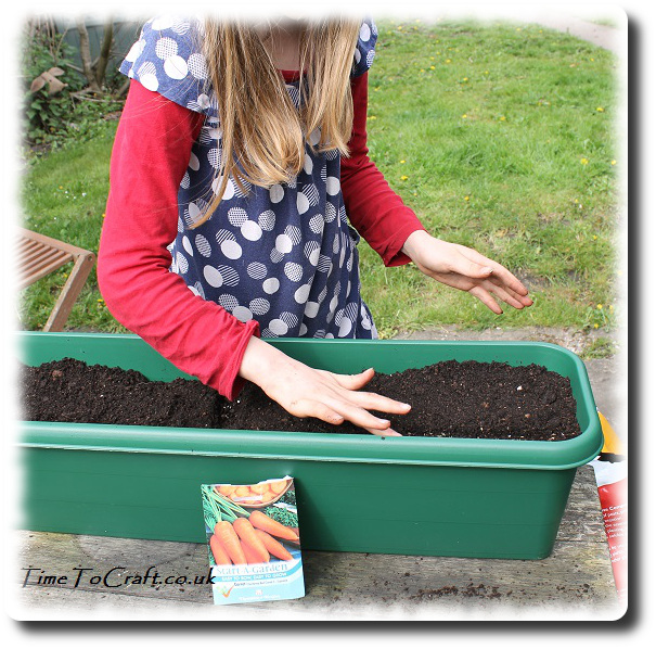 sowing carrots in childrens' planters