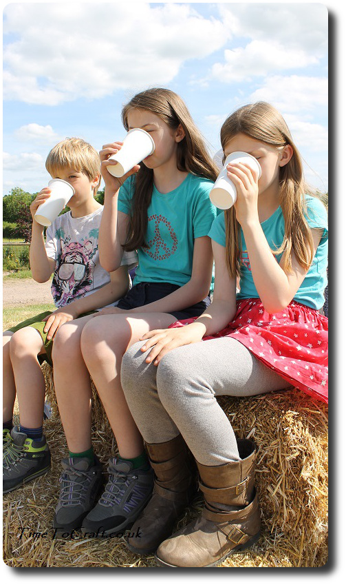 lemonade at Open Farm Sundy Wookey