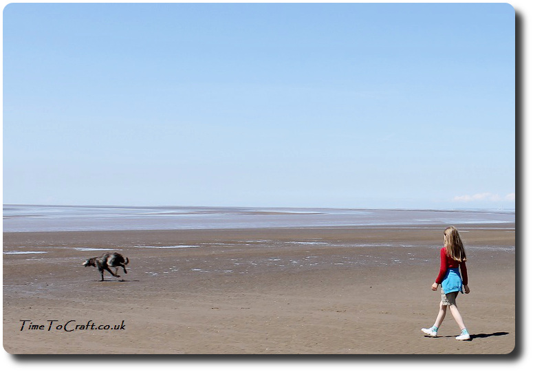 Pup running on the beach