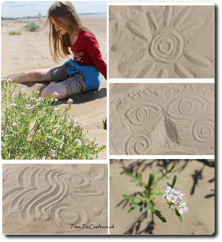 art and nature studies in the dunes