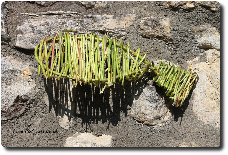 willow fish on stone wall