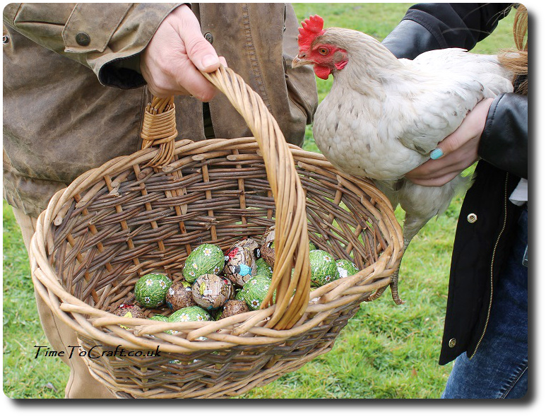 Lilac the hen and basket of eggs