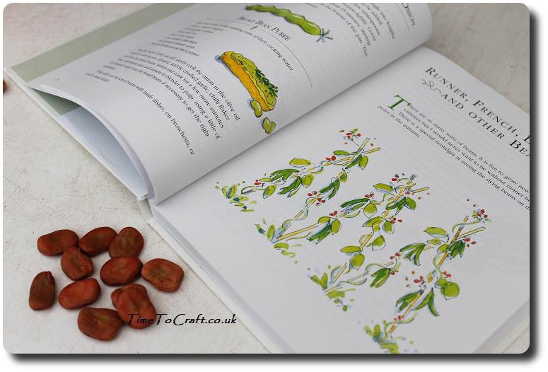 The allotment kitchen book
