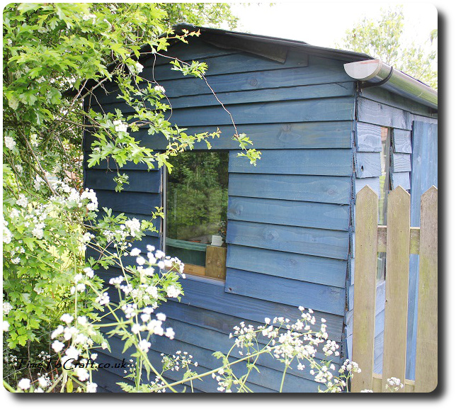 recycled blue potting shed
