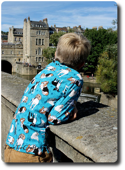 Simplicity 4760 boys shirt Pultney Bridge weir
