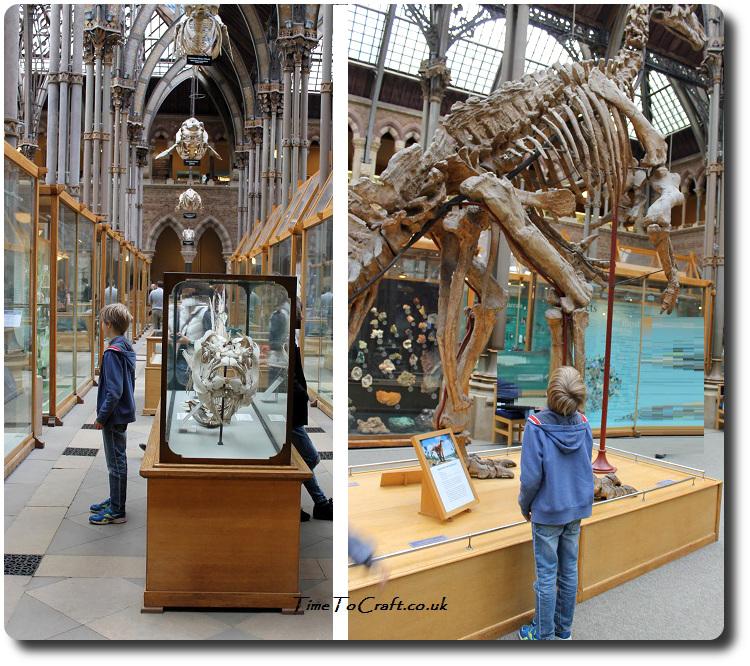 oxford-natural-history