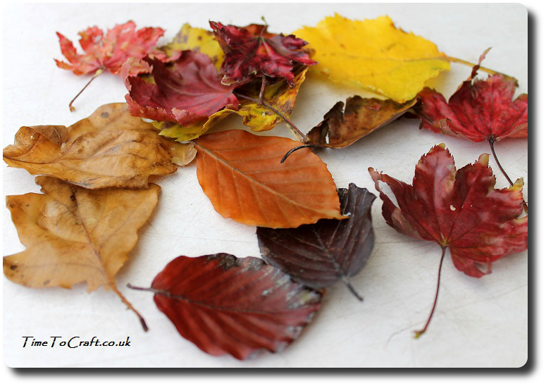finished-waxed-autumn-leaves