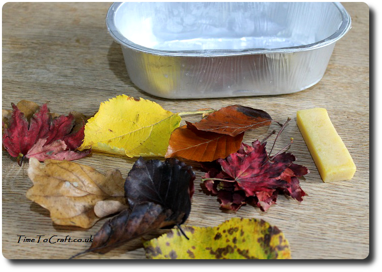 what-you-need-to-wax-autumn-leaves
