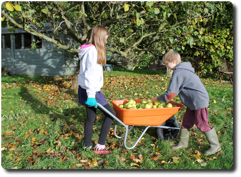 apples-in-the-wheelbarrow