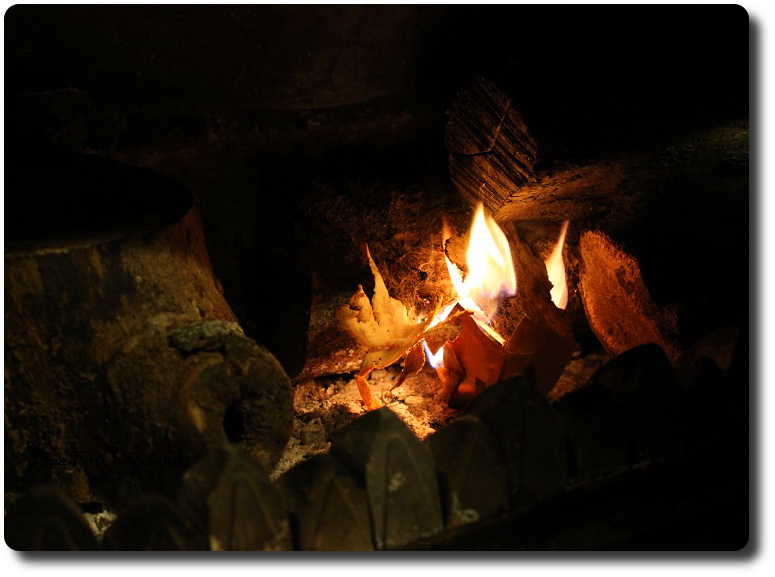 using-firestarter-in-woodburner